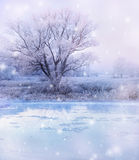 Winter lake Stock Photography