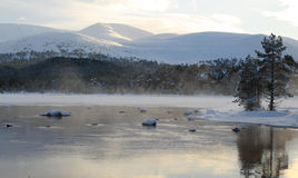 Winter lake and mountains Royalty Free Stock Photography