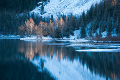 Winter lake scene with beautiful reflection Stock Images