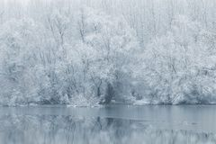Winter lake scene reflecting in the water. Nature stock images