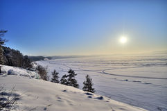 Winter lake shore with evergreen forest and sun Royalty Free Stock Photo