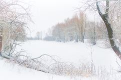 Winter lake landscape Royalty Free Stock Photography