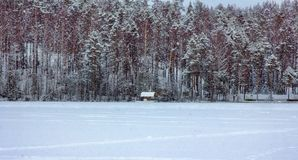 Winter lake among snow-covered forest. With small house for ice fishing -ice shanty, ice hut, icehouse Royalty Free Stock Photos