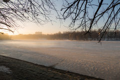 Winter Lake and tree in the morning. MOSCOW MARCH 10, 2016 stock photos