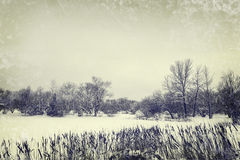 Winter lake and trees, vintage style photo Royalty Free Stock Image