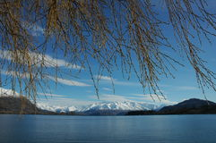 Winter lake view. Twigs with lake and snow mountain as background Stock Photo