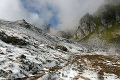 Winter land in summertime in the Swiss Alps Royalty Free Stock Photo