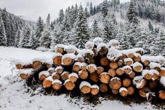 Winter land Stock Photography