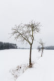 Winter landcape Royalty Free Stock Photos