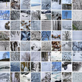 WINTER LANDS & TEXTURES 64 PICTURES Royalty Free Stock Images