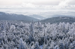 Winter landsape. In Sowie Mountains, Poland Stock Image