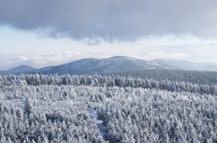 Winter landsape. In Sowie Mountains, Poland Royalty Free Stock Image