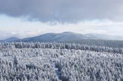 Winter landsape Royalty Free Stock Image