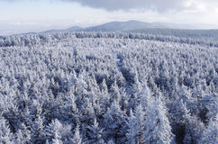 Winter landsape. In Sowie Mountains, Poland Stock Images
