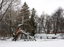 Winter landscape. With bridge and broken tree Stock Images