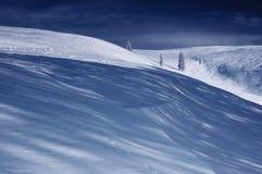 Winter landscape. Be single trees, it is taken picture in Ukrainian Carpathians royalty free stock photos
