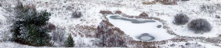 Winter landscape. Winter on a river with view of bushes Stock Image