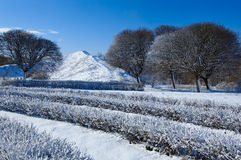 Winter landscape. First snow in the park stock photos