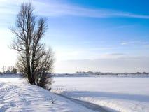 Winter-landscape. Stock Photography