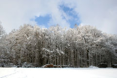Winter-Landscape. Digital photo of a winter-landscape in germany Royalty Free Stock Photography