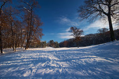 Winter landscape. Natural landscape covered with snow Stock Images