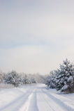 Winter landscape. Winter road with deep blue sky and frozen trees Royalty Free Stock Photo