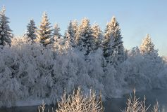 Winter landscape. Frost on the river in a winter landscape Royalty Free Stock Photography
