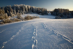 Winter Landscape. Winter in Estonia, Vana-Otepaa landscape Stock Photography
