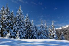 Winter landscape. Mountains Carpathians, Ukraine, a mountain valley Pogarsky. Winter stock photos