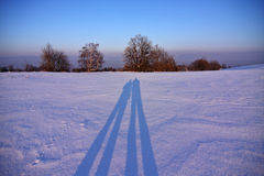 Winter landscape. Beautiful winter landscape with the long people shadows royalty free stock image