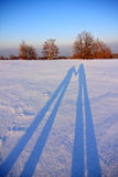 Winter landscape. Beautiful winter landscape with the long people shadows stock images