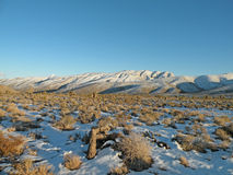 Winter landscape. In Spring mountains in southern Nevada near Las Vegas Royalty Free Stock Photography