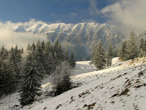 Winter landscape. Mountains and trees in winter season Stock Images