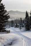Winter landscape. In the mountains of the Kemerovo region, Russia Royalty Free Stock Photography