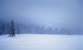Winter landscape. Snowy winter landsape, slovak republic stock photos