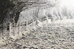 Winter landscape. A cold frozen winter landscape Royalty Free Stock Photography