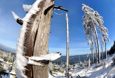 Winter landscape. Winter in the national park Sumava - Czech Republic - pictures of fisheye Stock Images