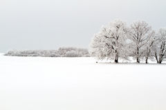 Free Winter Landscape Royalty Free Stock Photos - 17700908