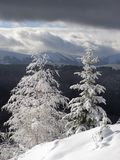 Winter landscape 2 (vertical) royalty free stock photography