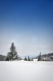 Winter landscape. In snowy mountains Royalty Free Stock Image