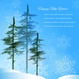 Winter landscape. With a green pine-trees Stock Images