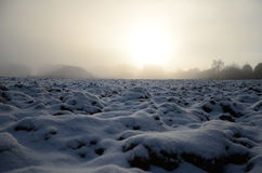 Winter landscape. In Czech Republic during the morning Royalty Free Stock Photography