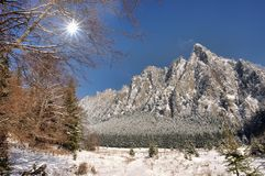 Winter landscape. Winter mountain scene in Romanian Carpathians Stock Images