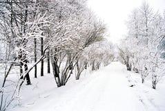 Winter landscape. A winter road stock photo