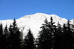 Winter landscape. Montain covered by snow, in Davos Region, Switzerland stock image