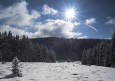 Winter landscape. Snowy grass field- Sumava mountains Bohemia royalty free stock photos