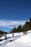 Winter landscape Royalty Free Stock Photo