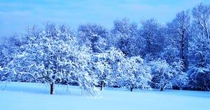 Winter Landscape. Winter wonderland in Wisconsin, US Stock Image