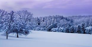 Winter Landscape. Winter wonderland in Wisconsin, US royalty free stock image