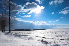 Winter landscape. Winter landcape with sun, trees, blue sky with some clouds stock photos